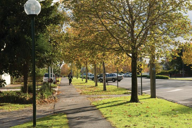 Monash Council Street Tree Strategy
